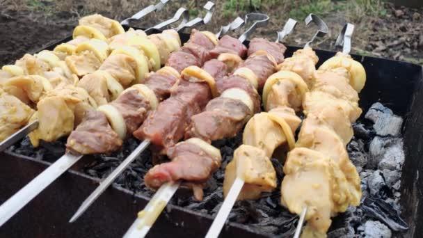 maso v koření se griluje na grilu a uhlí