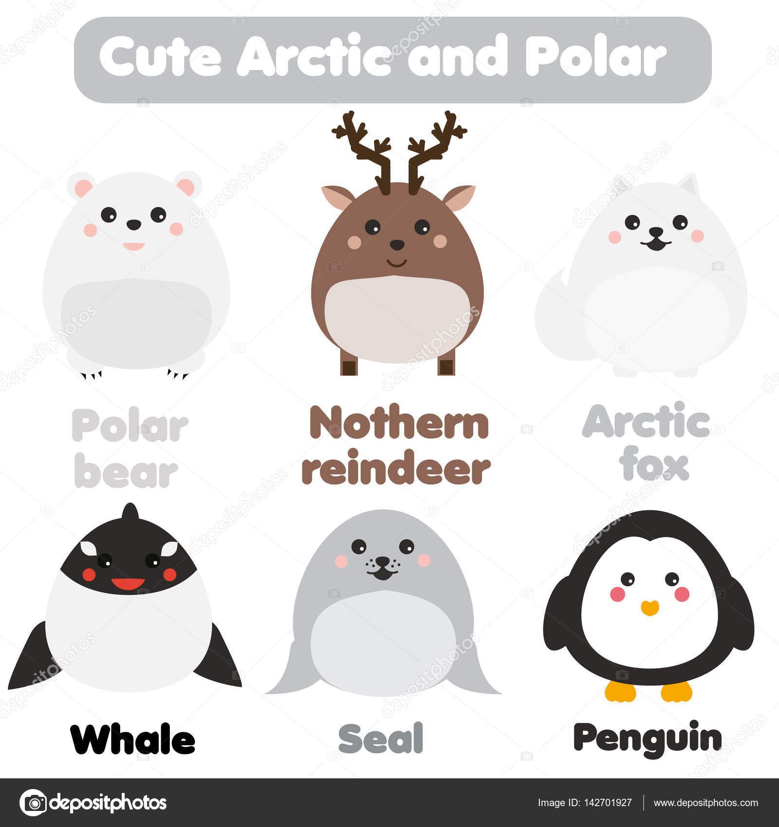 Kawaii Cute Animali Artica E Polare Stile Dei Bambini Elementi Di