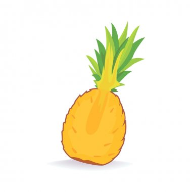 Pineapple isolated Vector set. Half and sliced pineapple with leaf.