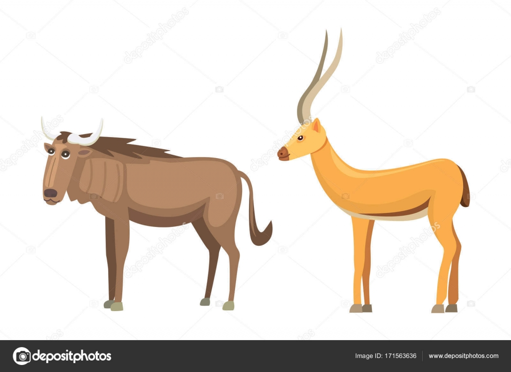 カモシカ漫画のベクトルを設定しますサバンナの動物のベクトル