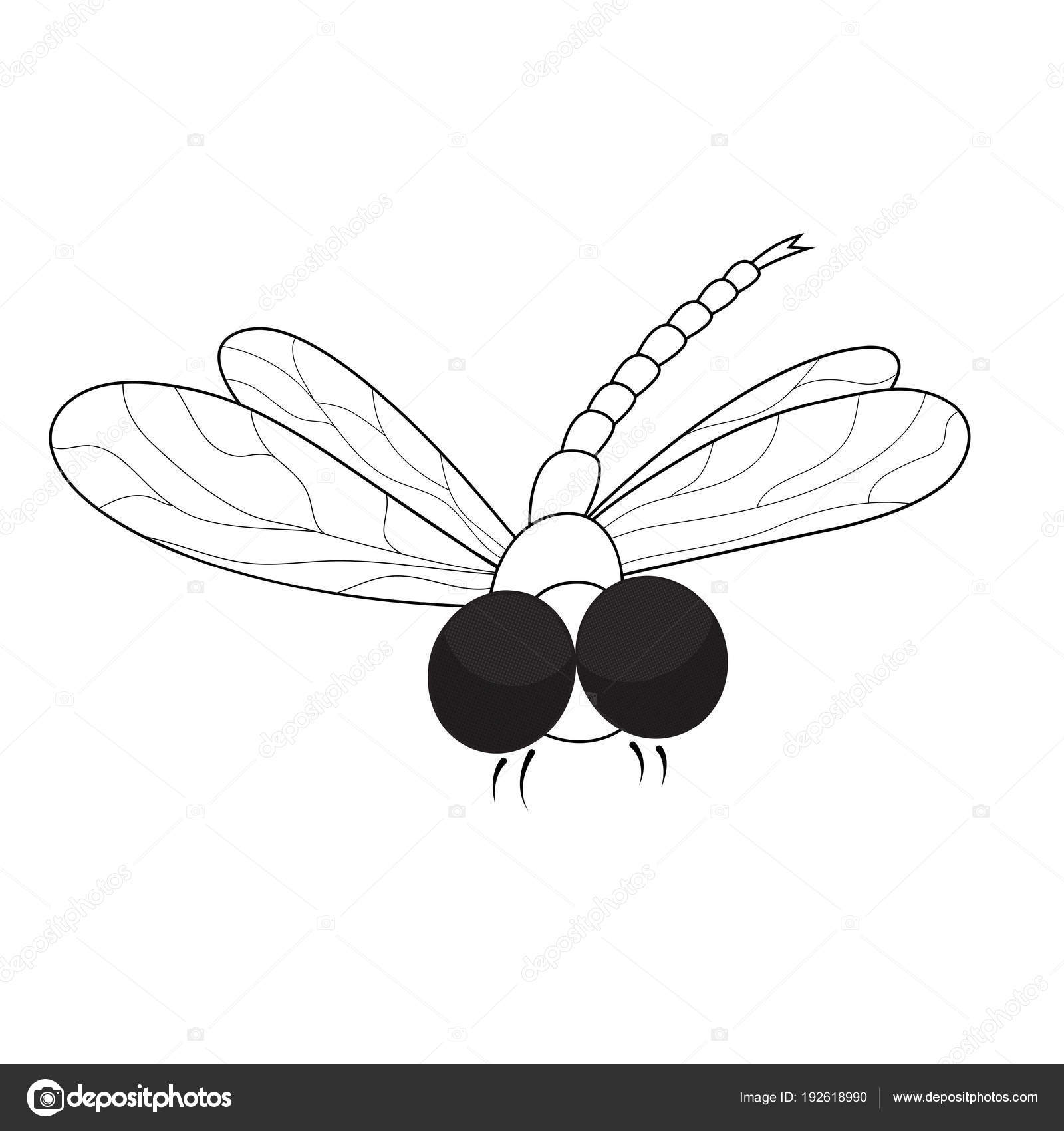 Dragonfly Coloring Page Black White Illustration — Stock Vector ...