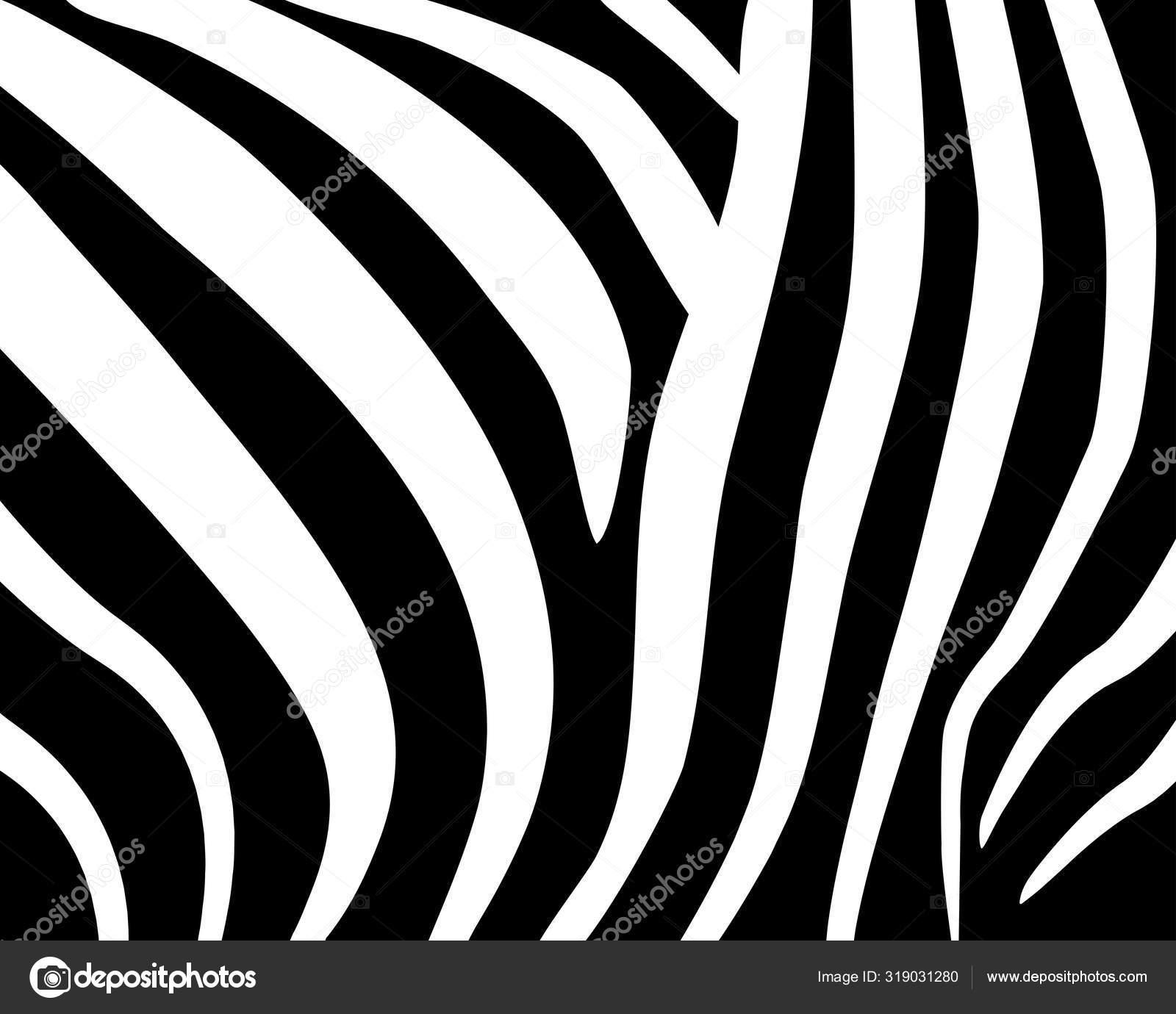 Padrao De Zebra Padrao Geometrico Abstrato Fundo De Pele Animal