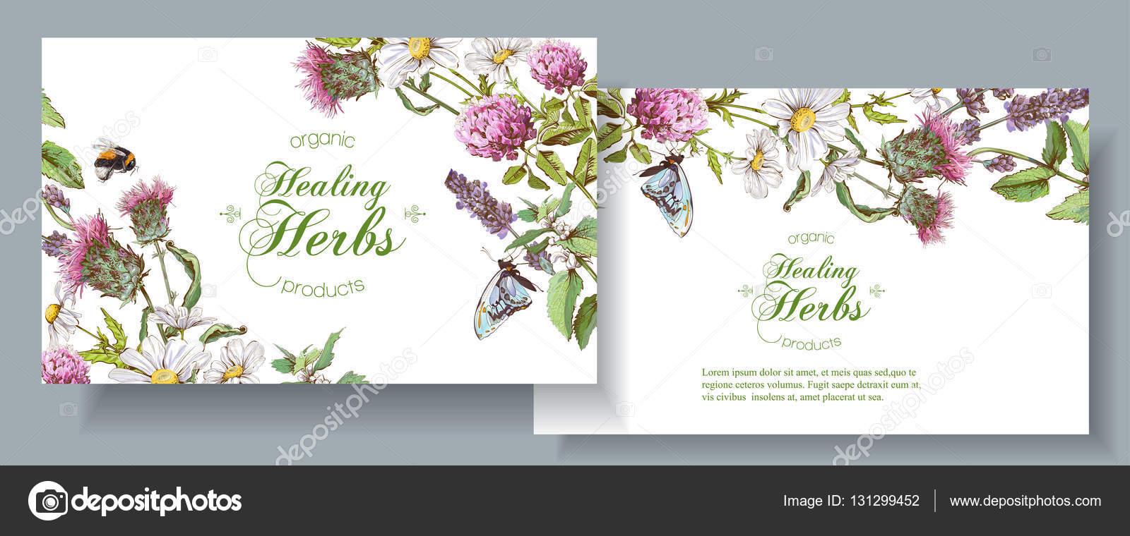 Vector Herbal Banners Stock Vector C Purplebird18 131299452