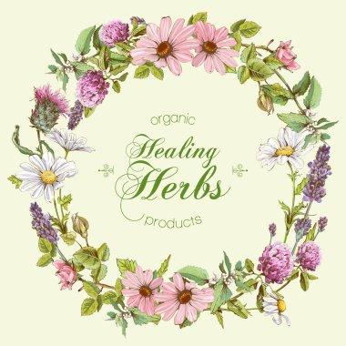 Vector herbal banners