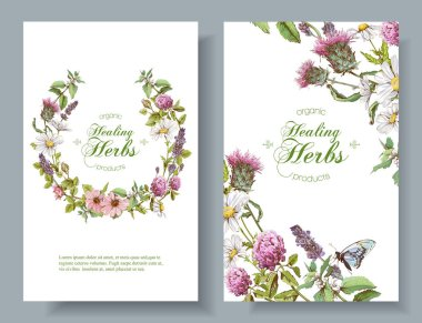 Vector herbal banners