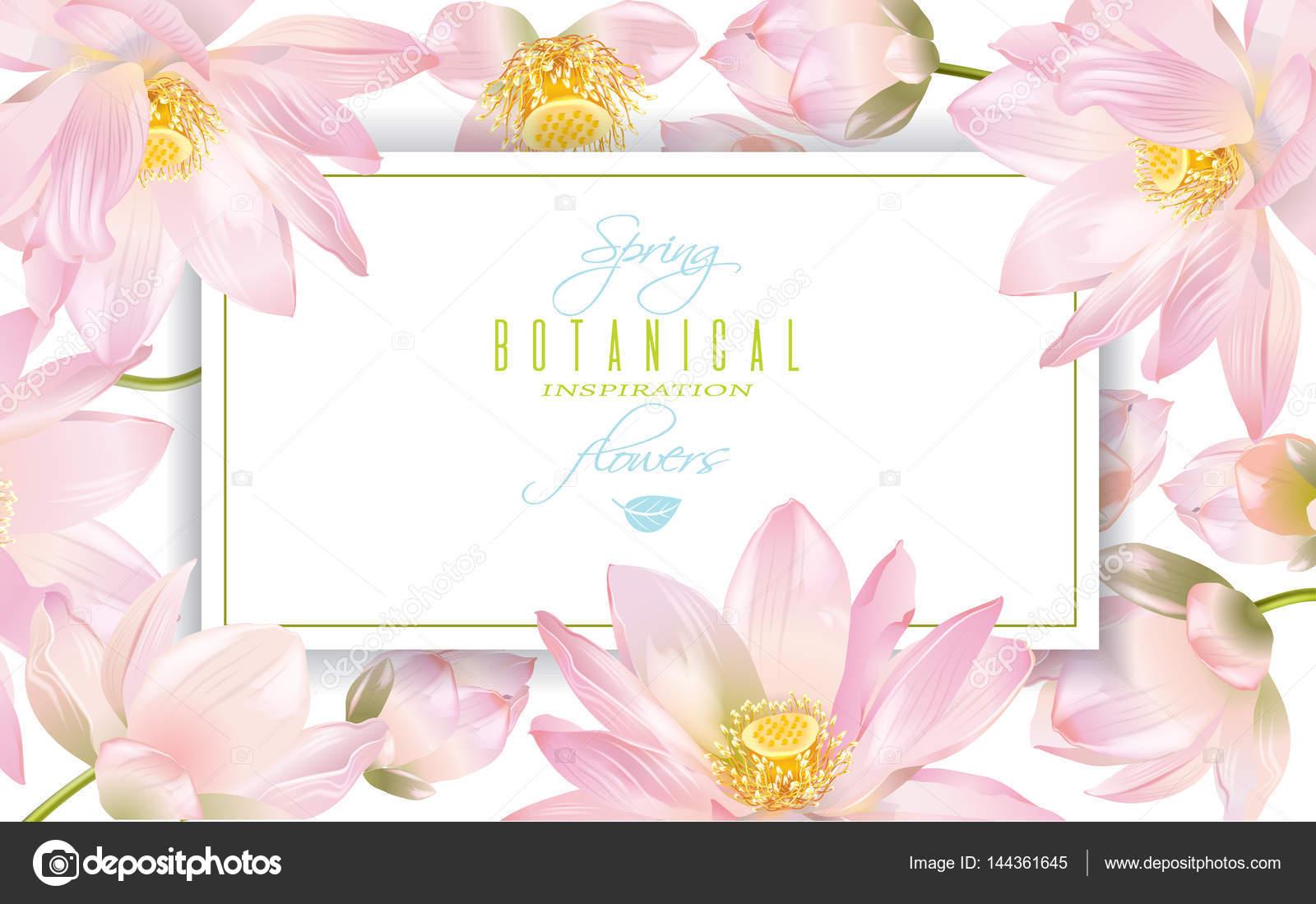 Lotus Flower Banner Stock Vector Purplebird18 144361645