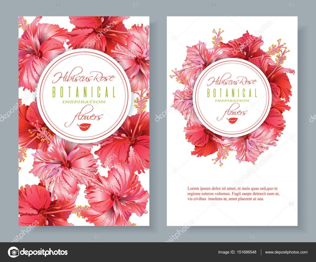 Hibiscus Flower Banners Stock Vector Purplebird18 151686548