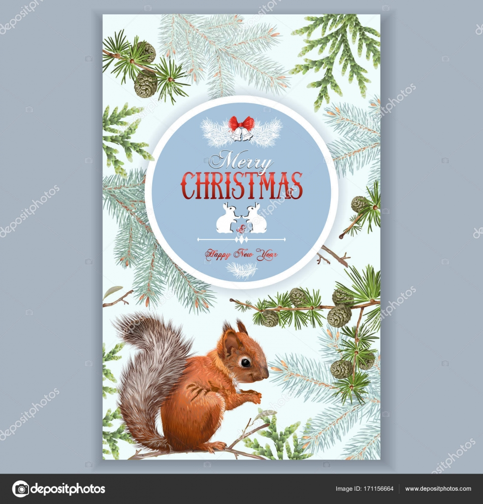 Weihnachten-Eichhörnchen-frame — Stockvektor © PurpleBird18 #171156664