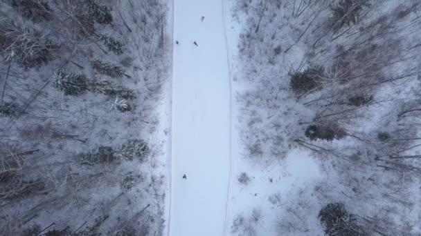 Lidé, snowboarding a lyžování na sněhu svahu v lyžařském středisku. Zima lyžování