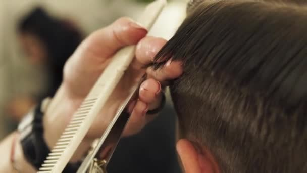 Haircutter combing hair and cutting with hairdressing scissors in barbershop. Close up hand hairdresser cutting wet male hair with hairdressing scissors in beauty salon.