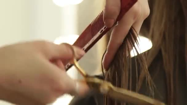 Female hand hairdresser combing long hair and cutting with hairdressing scissors. Close up woman hairdressing with professional scissors in beauty salon.