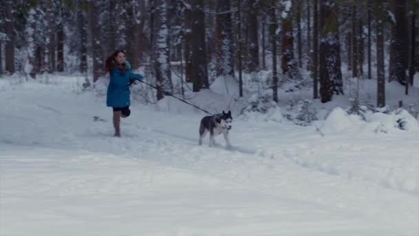 Dívka pracuje se svým psem Husky v zimním lese