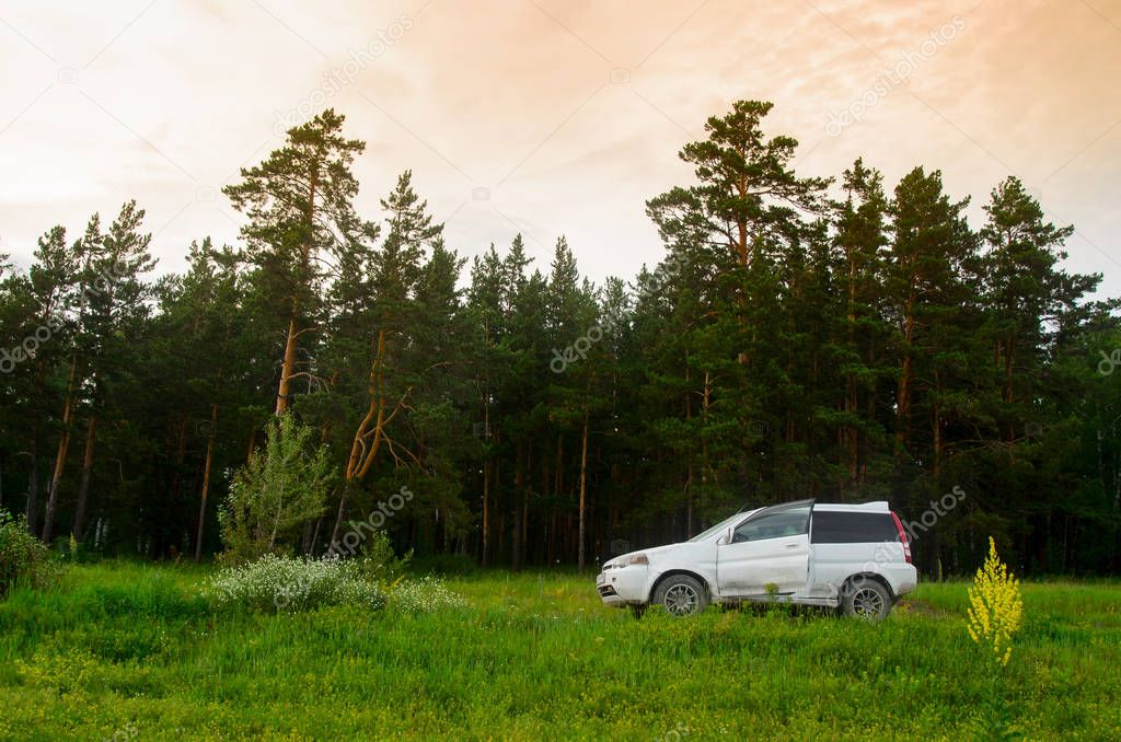 Novosibirsk, Russia - June 29, 2017 crossover Car brands Honda HR-V is on the field in the grass near the forest beneath the fat of the sunset sky in Novosibirsk on June 29, 2017