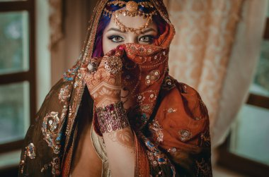 portrait of a beautiful young woman in traditional Indian ethnic
