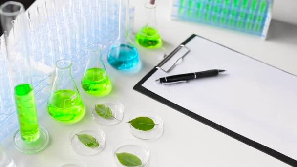 A kesztyűs kutató csipeszt vesz egy Petri-csészéből. Laboratóriumi vizsgálatok és a növények genetikai módosítása egy modern laboratóriumban. Felvétel közelről.