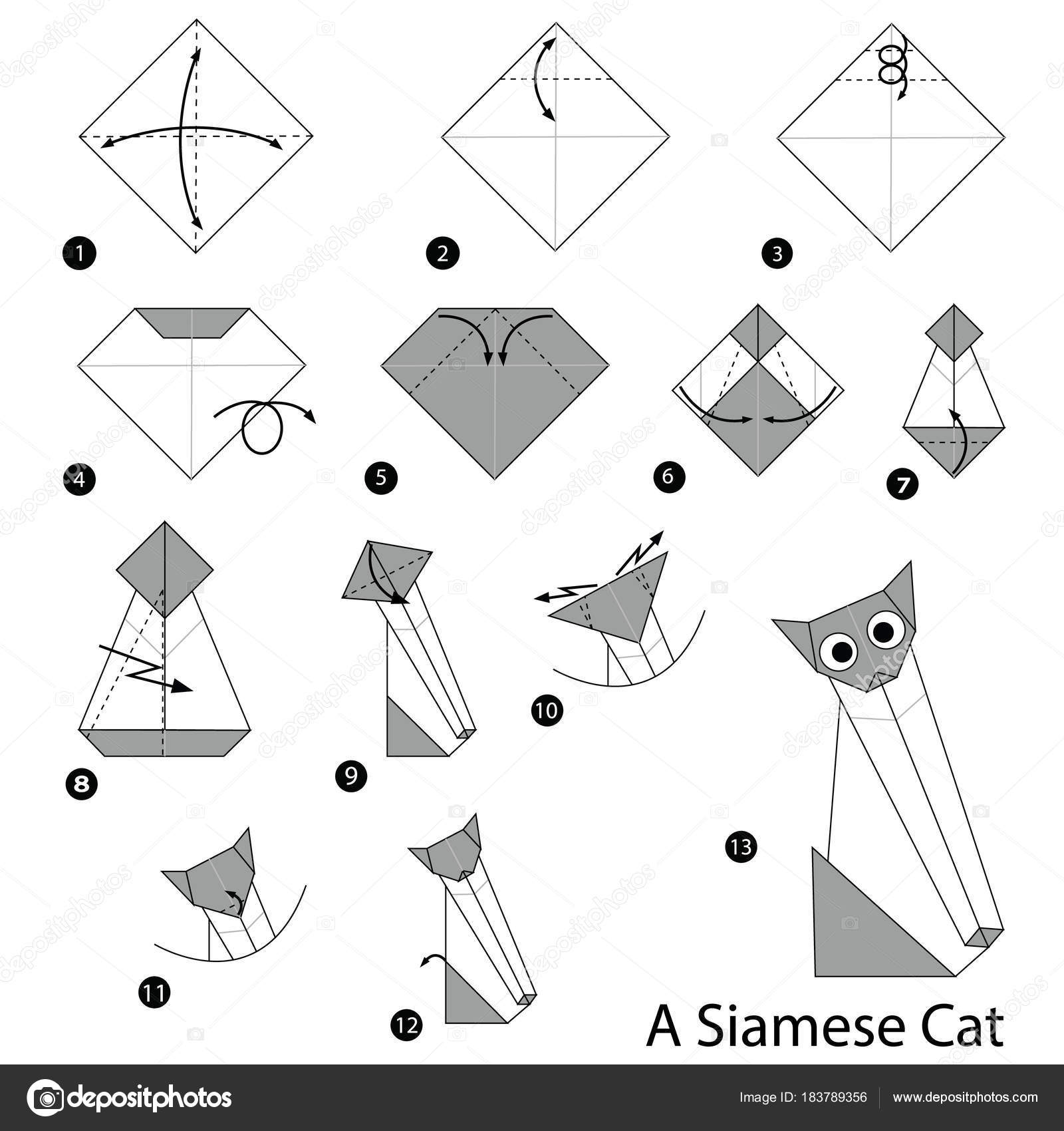 Step Instructions How Make Origami Siamese Cat Stock Vector Bear Diagram