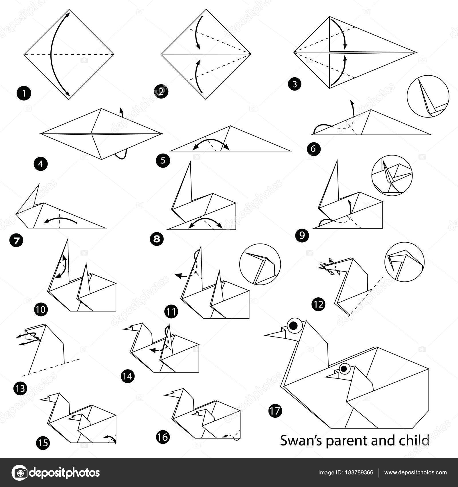 Schritt Fr Anleitung Wie Man Origami Swan Parent Und Pics Photos Diagrams Stockvektor