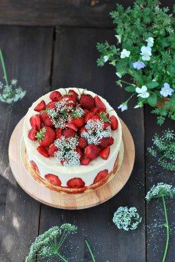 Strawberry cake fraisier