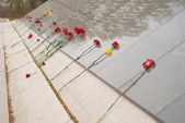 Červené karafiáty na pomníku padlých hrdinů během druhé světové války,