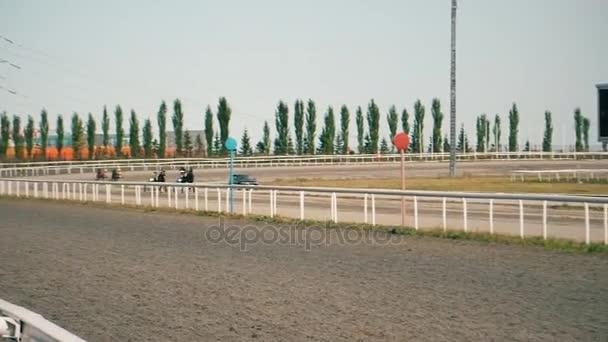Pferderennen Sie, Tests der Pferde traben Rassen, das Rennen auf dem Hippodrom