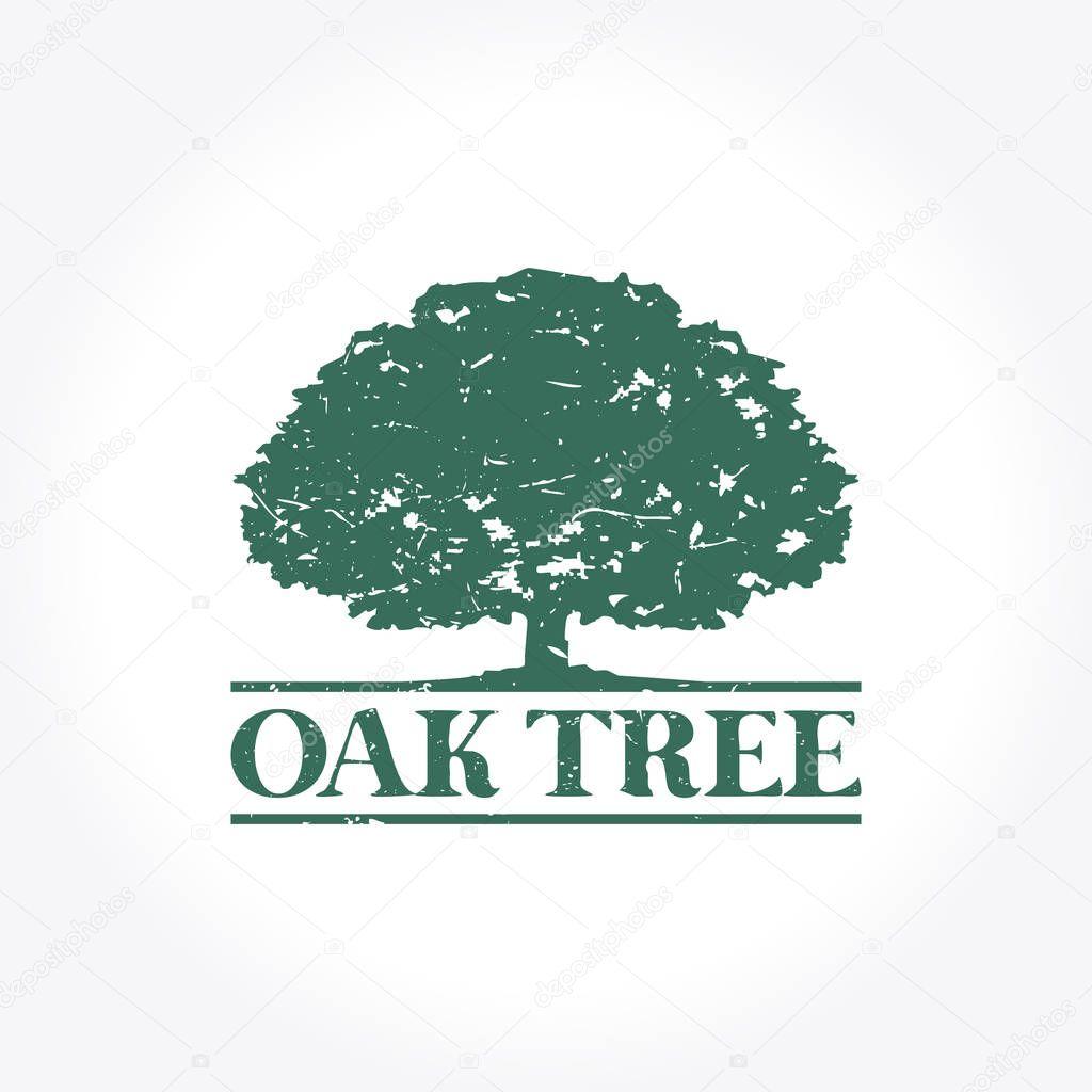 Green Oak Tree