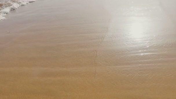 Moře, vlny oceánu nad Sand Beach