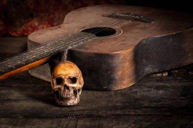 Skull and guitar on wood, still life