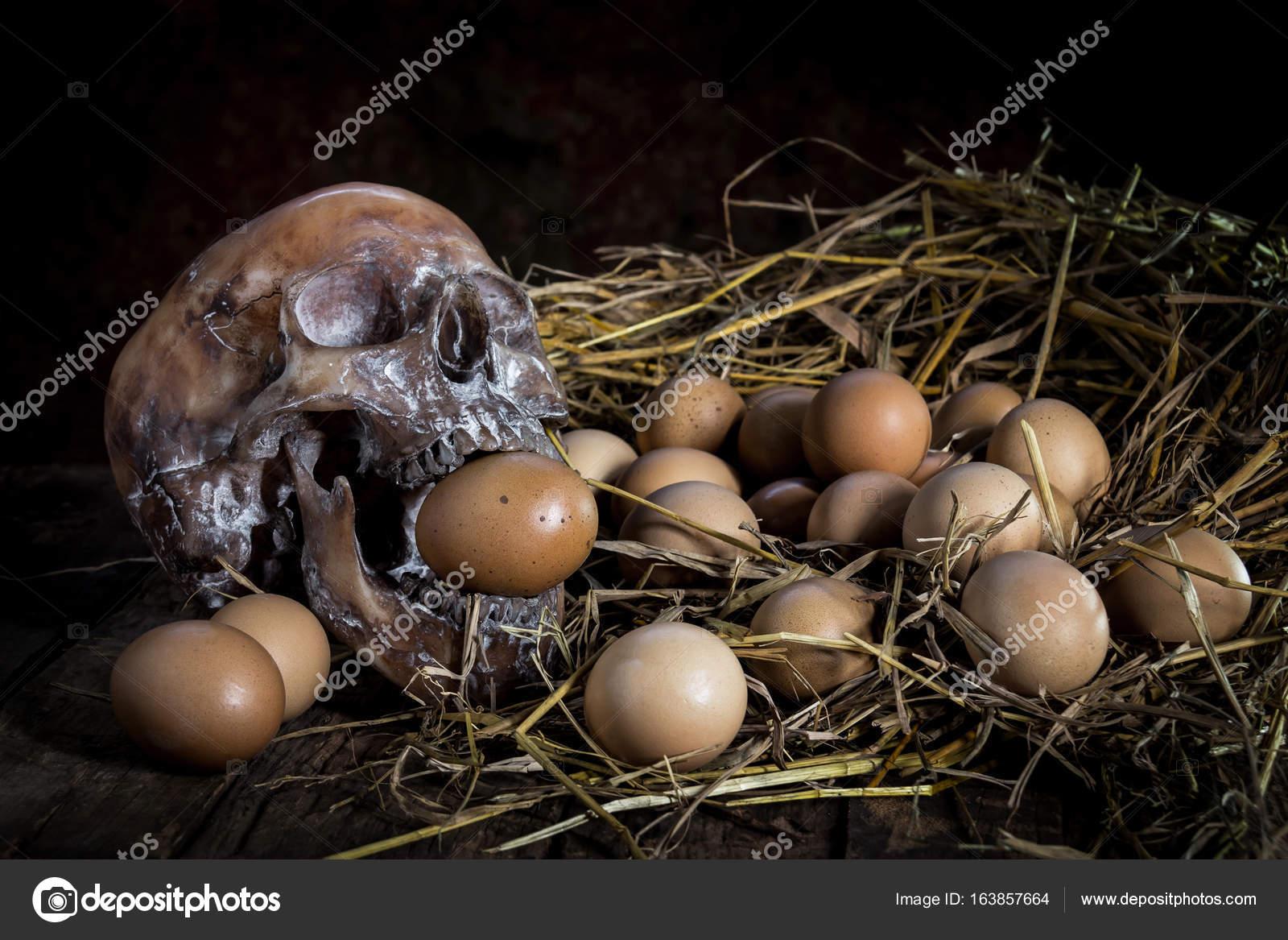 Вечеринка зрелых в рот по яйца фото девушки скрытую фото