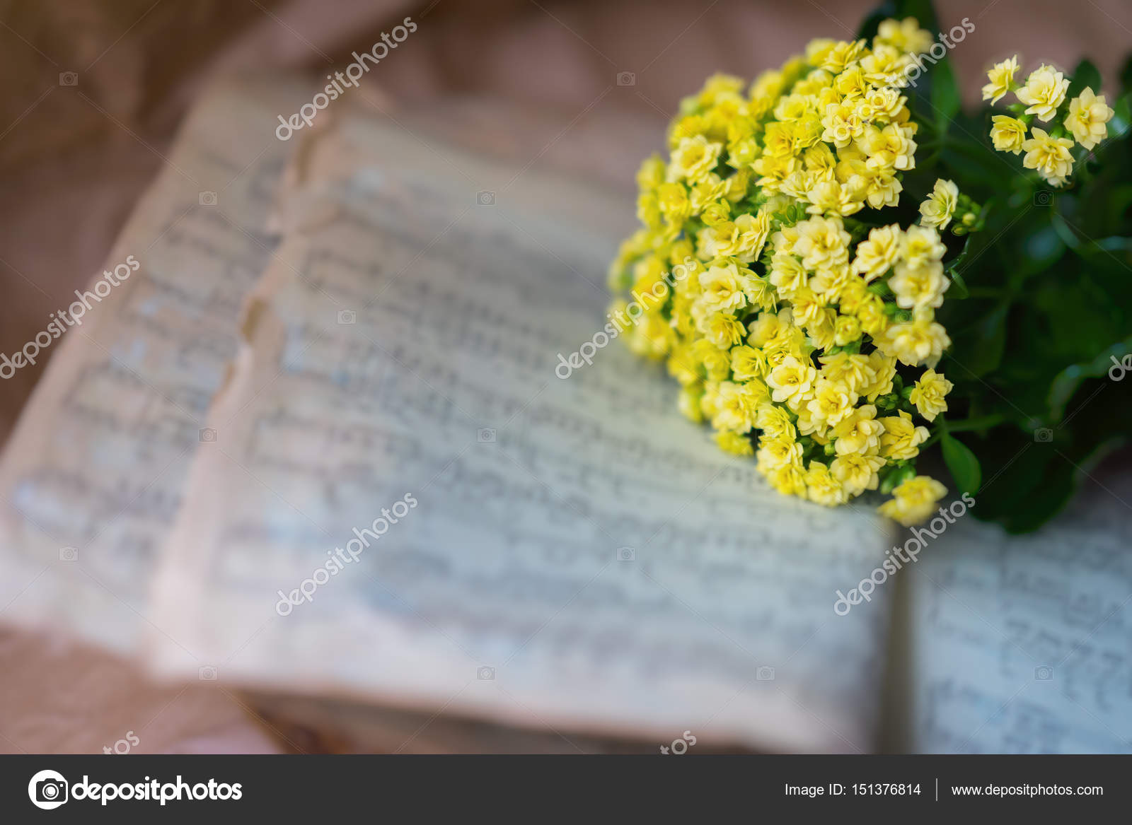 Abstract Vintage Grunge Music Background Yellow Flowers On Yellowed