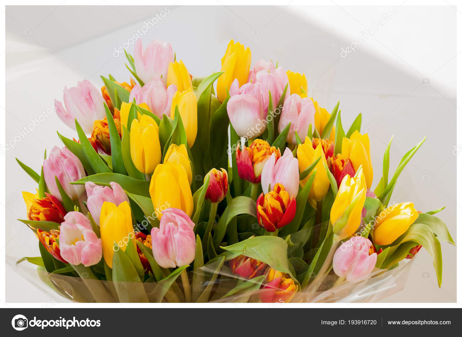 Flowers tulips bouquet colored bouquets of tulips greeting card flowers tulips bouquet colored bouquets of tulips greeting card for all occasions izmirmasajfo
