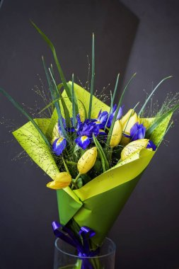 Yellow tulips and violet irises, bouquet of flowers in a bright wrapper in a glass vase. Greeting card for all occasions, especially spring. Romantic background for all occasions