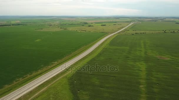 Long straight road highway in the field green grass. Agriculture wide open space horizon. Primorsky krai Russia  near Vladivostok. Summer sunny day.