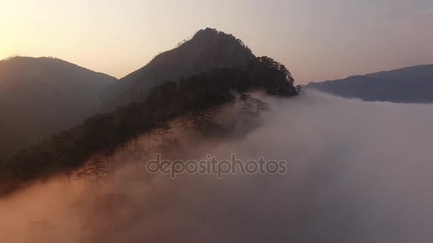 Epic early morning orange sunrise helicopter flight above dramatic clouds. Montenegro black rock mountains forest. Tara river grand canyon.