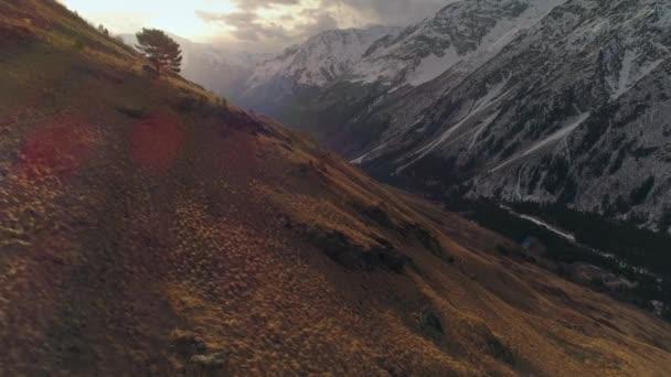 Magányos fenyő sziluett festői narancs naplemente sugarak hegyek táj kontraszt sárga fű és havas lejtők. Kaukázus Oroszország egyedi természet. Alpok Skandinávia. Napkelte drámai felhők. Légi alacsonyan fent