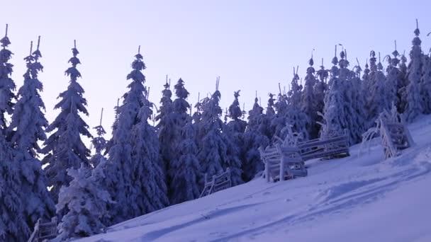 Nádherné bílé a zamrzlé stromy s východem slunce na Lysé hoře v Čechách, pohoří Evropa. Hraje si s barvami. Oheň a temnota. Zasněžené země a hory