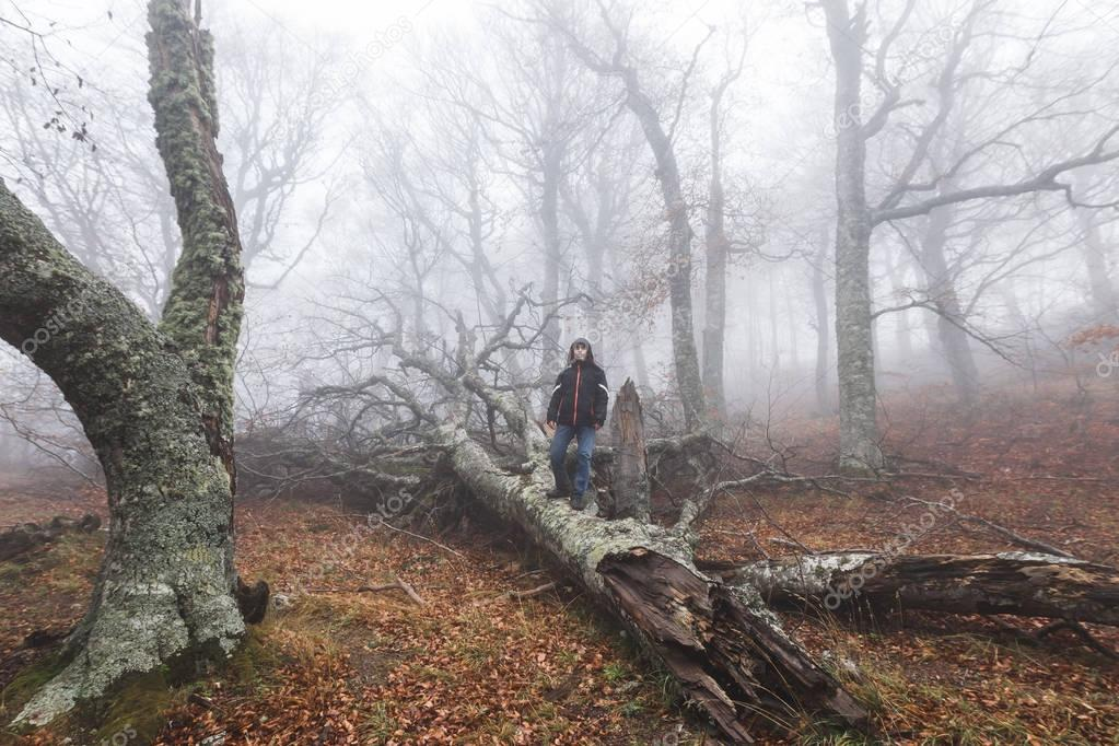 Man alone in mysterious  forest