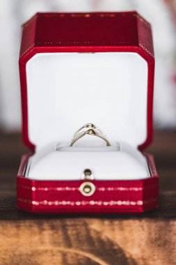 Wedding rings in  gift box