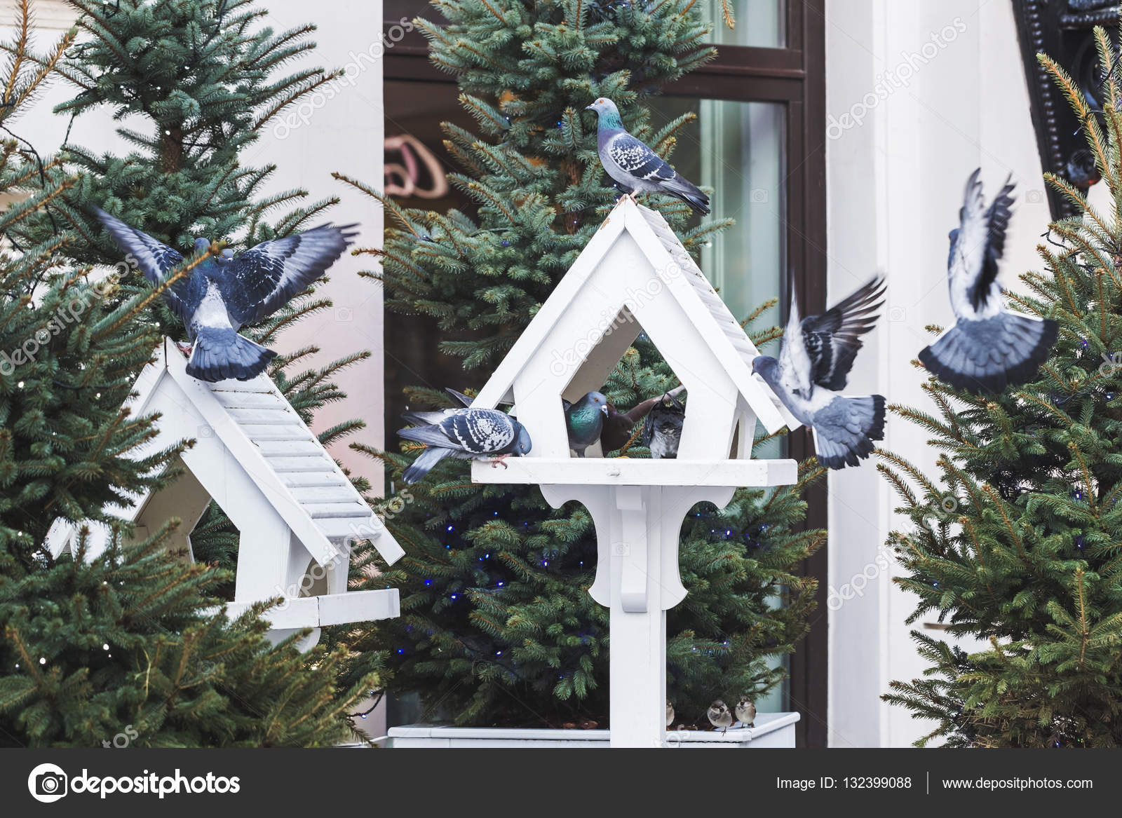 lovely outdoor bird feeders in fur trees decorations for christmas photo by olegbreslavtsev - Outdoor Christmas Tree Decorations For Birds