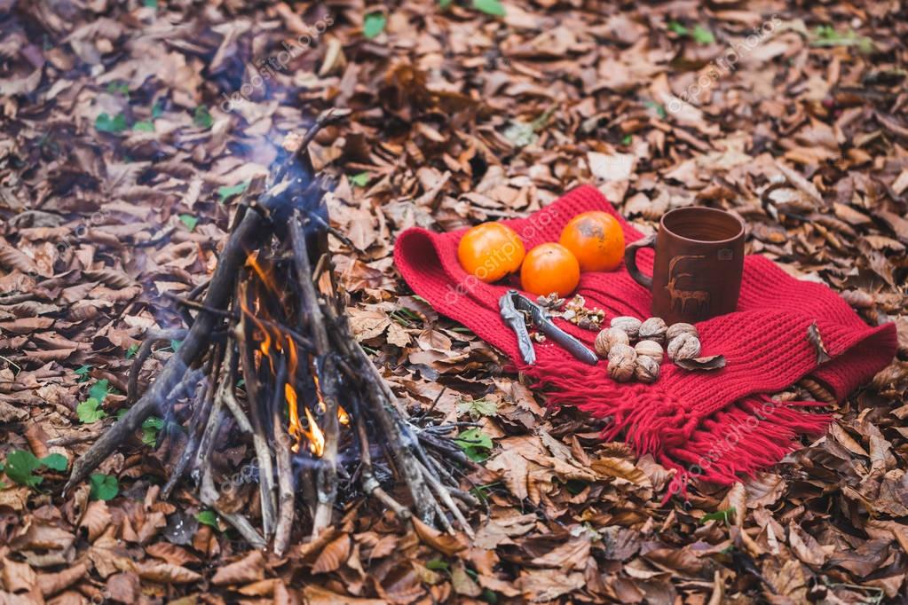 Cozy picnic in autumn forest