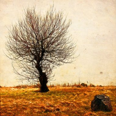 Lonely tree in aged textured art background.