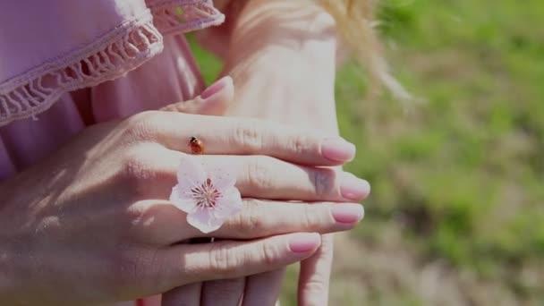 Katicabogár rovar a virág nő kezében