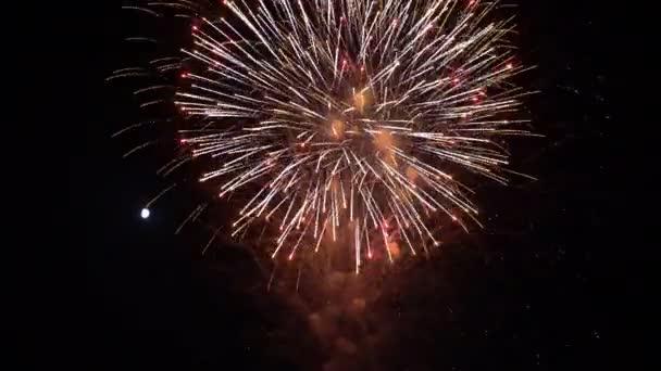 slavnostní pestrobarevný ohňostroj barevný ohňostroj v noci