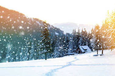 Beautiful winter landscape in the mountains with falling snow an