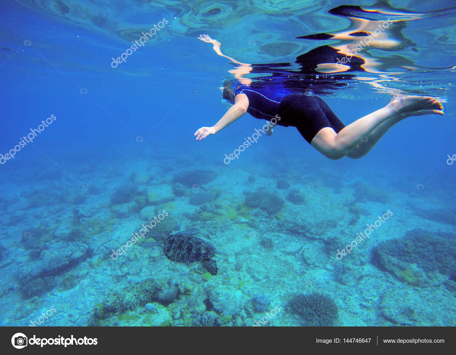 c80bba58b Fundo do mar tropical. Mulher nada submarinos em traje de banho e máscara  facial. Fotografia subaquática do snorkel feminino. Mergulho em Recife de  coral ...