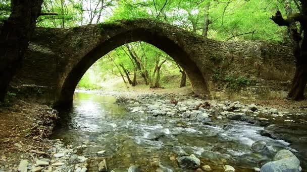 Horská řeka teče pod středověkého benátského mostu
