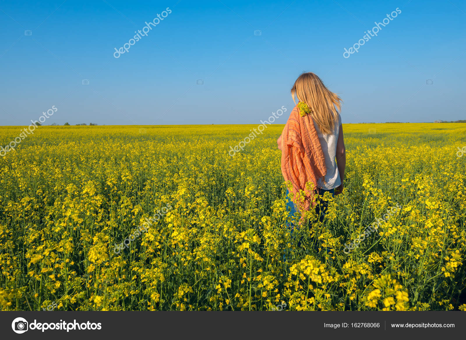 Romantic Young Woman In Field Of Yellow Flowers Stock Photo