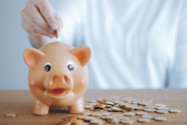 Female hand putting euro coin into a piggy bank. Investment and savings concept.