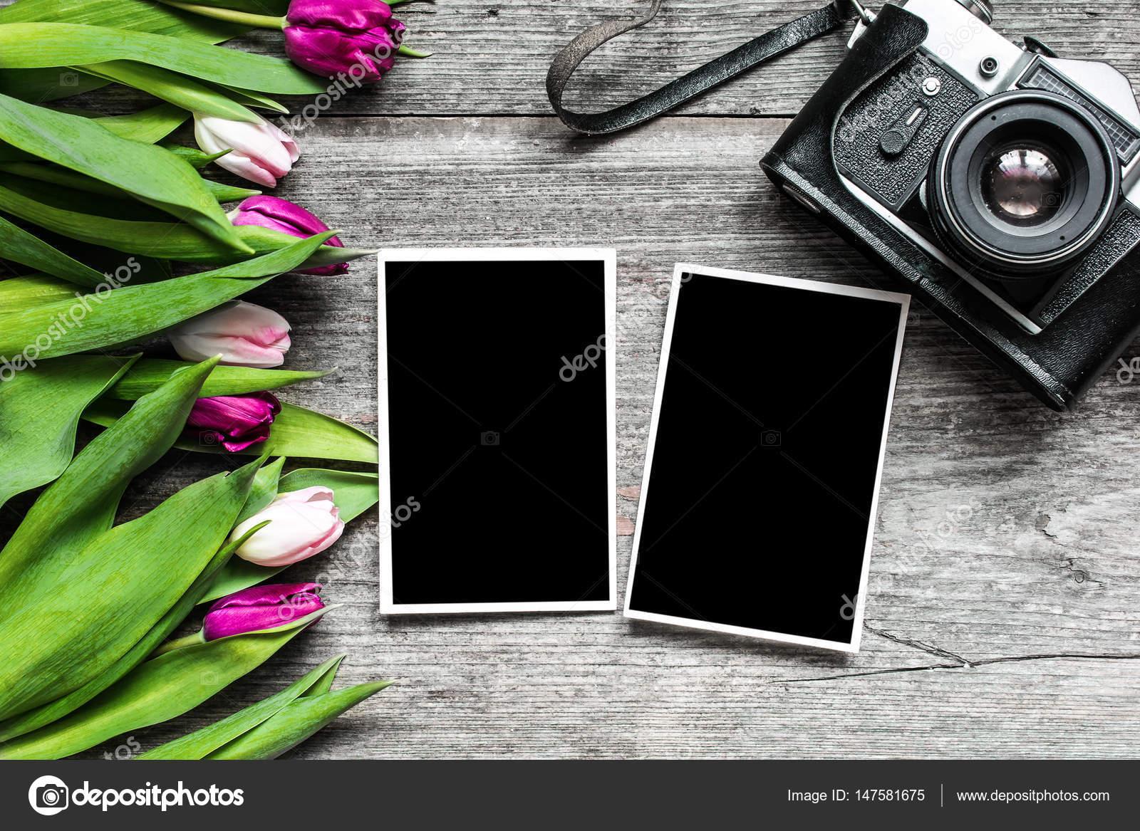 Vintage Retro Camera With Blank Photo Frames And Purple Tulip Fl