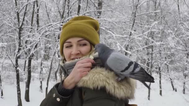 Woman is feeding a flock of pigeons in winter