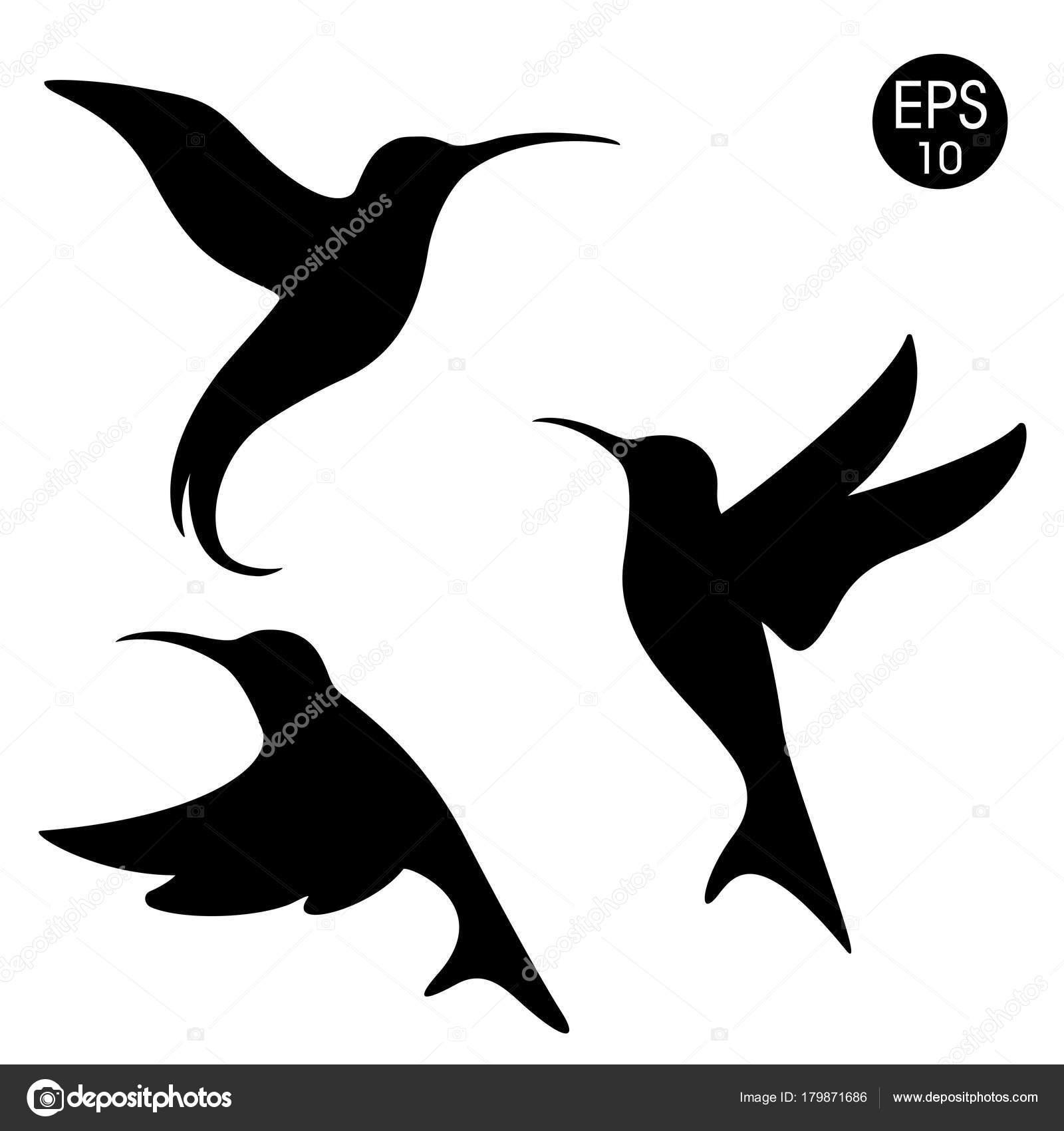 Fotos Colibri Silueta Silueta De Colibri Negro Vector Pájaros En